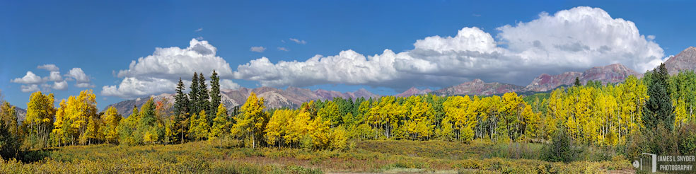 Golden Aspens, Ruby Range