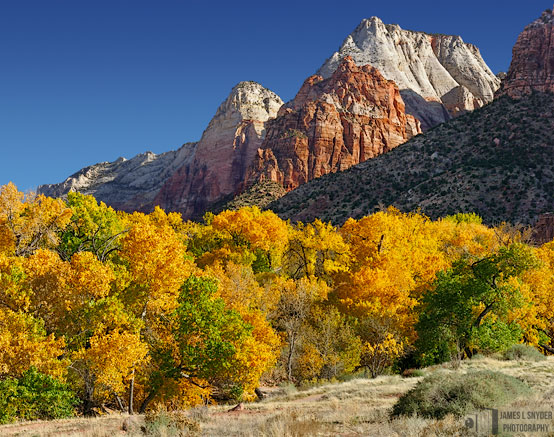 Zion Autumn Morning